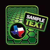 Texas icon on green hexagon banner poster