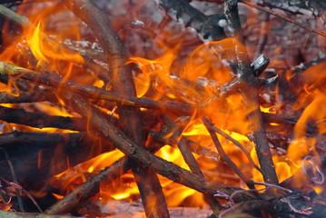 feux de bois