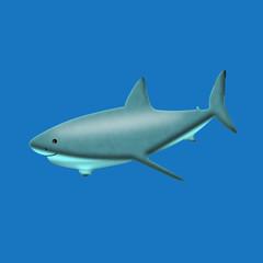 Serene shark