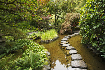 A stream and a decorative path from stones