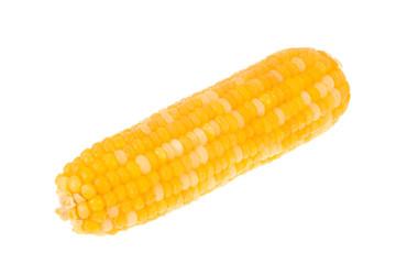 sweet corn on isolated