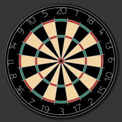 traditional round dartboard vector image