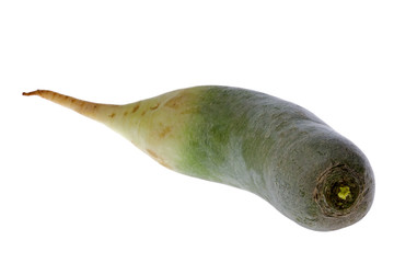 Green Chinese Radish Isolated