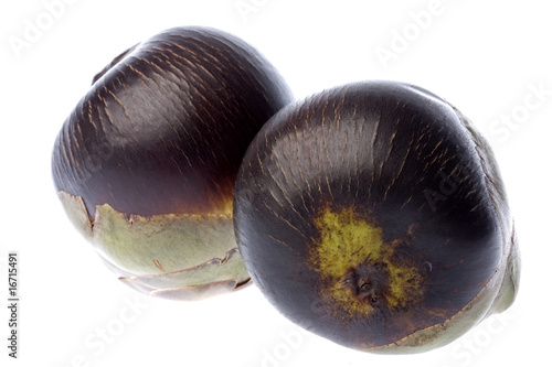 Fresh Toddy Palms Isolated