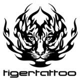 vector illustration tattoo - tiger
