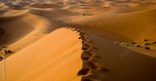 In de dag Oranje eclat Sahara desert in Morocco