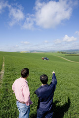 Farmers in sunny, young wheat field pointing to fertilizing tractor in distance