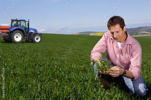 Farmer examining young wheat crop with fertilizing tractor in background