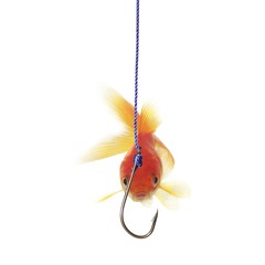 golds fish and metal empty hook