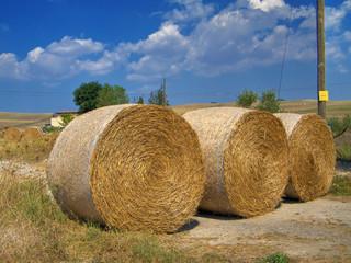 Haystack. Puglia.