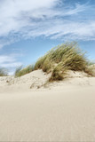 dunes at the Baltic sea poster