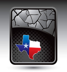Texas icon cracked silver backdrop