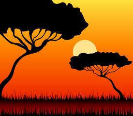 Beautiful bright landscape of a decline in a summer safari