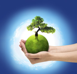 Human hands holding green planet with bloom tree