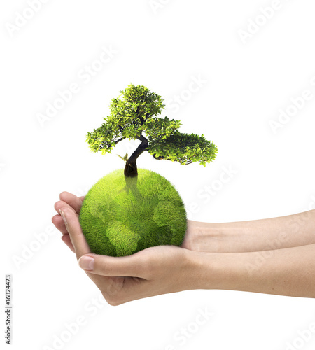Ludzkie ręce trzyma zieloną planetę z drzewa kwitną