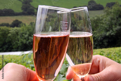 Glasses of rose / red and white sparkling wine