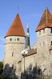 Les fortifications de Tallinn poster