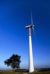 energia eolica e ambiente