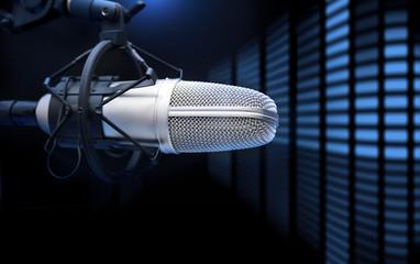 Microphone and analyzer