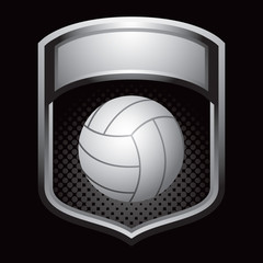 Volleyball in silver display