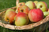 Basket full with apples
