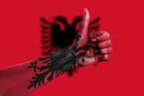 OK Albania poster