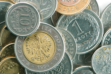 Polish coins in close-up