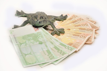 Frosch mit Geld im Maul