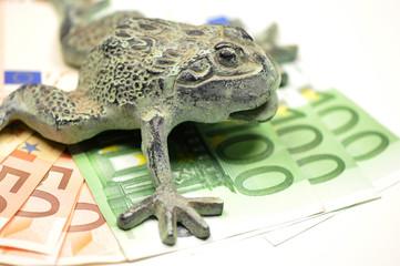 Glücksbringer Frosch mit Geldsegen
