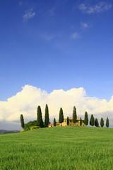Wolkenhimmel, Zypressen, Haus, Toskana, Val d Orcia, Italien