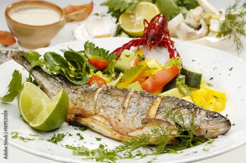 Grilled trout - 16953009
