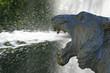 Brunnen Löwe - fountain lion