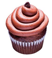Choclate Swirl Cupcake