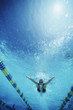 Underwater view of swimmer in pool
