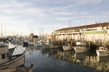 Californian harbour