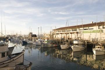 Californian harbour