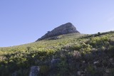 Lions Head Mountain, sister peak to Table Mountain, South Africa