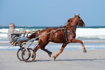 Entrainement sur la plage
