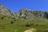 Trascau Mountains,Transylvania,Romania poster
