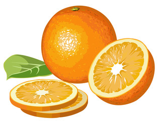 Realistic oranges with half, slices and leaf