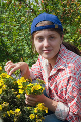 Girl cutting shrubby cinquefoil