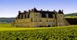 Château du Clos Vougeot, Bourgogne - 17022077
