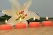 Lilie mit Kerzen