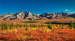 Denali National Park in autumn - 17036670