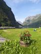 Naeroyfjord Scenic