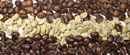 Mixe of coffees beans on white background