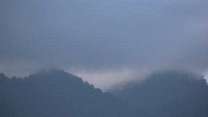 Bruma en las montañas
