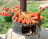 Roasting red paprika on range for winter provisions poster