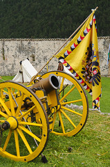 Yellow cannon and flag