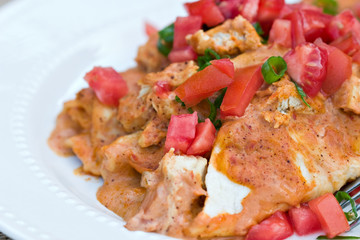 Chicken Enchiladas with tomatoes and green onions.